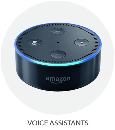 VOICE-ASSIST.jpg?1540472618160
