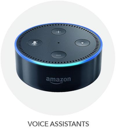 VOICE-ASSIST.jpg?1540472618160