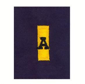 Coast Guard Auxiliary Jacket Tab: FCO/DCO