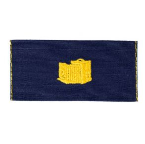Vanguard Coast Guard Collar Device: Warrant Officer Public Information  Front View
