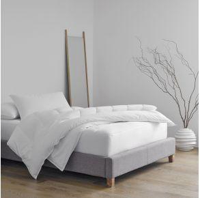 Martex Clean Essentials Mattress Encasement - Queen - White Front View